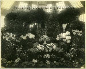 Hershey Estates Greenhouse