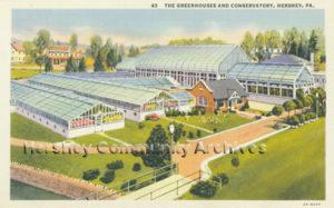 Hershey Estates Greenhouse, ca1935-1940