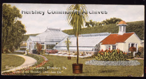 High Point mansion conservatory, ca1909-1918