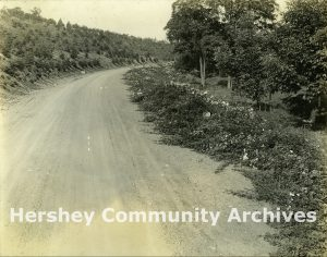 Drive to Pat's Hill, ca. 1915-1924